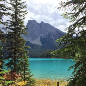 emerald-lake-2-yoho-national-park