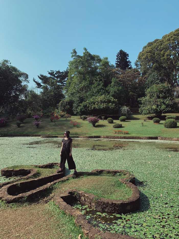 Royal-Botanic-Gardens-Peradeniya-Sri-Lanka