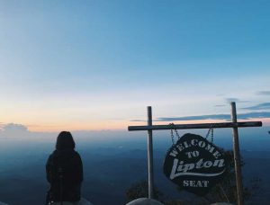Lipton's Seat Sonnenaufgang