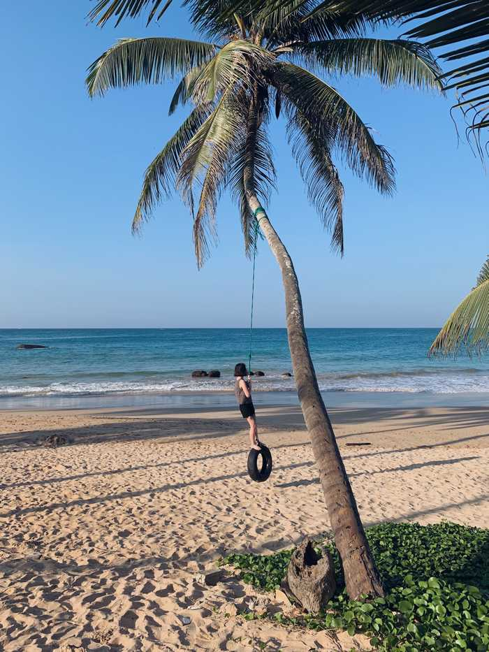 Strandschaukel-Mirissa-Sri-Lanka
